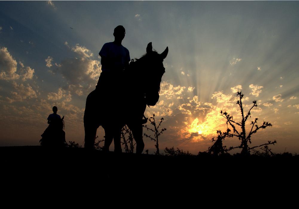 horseback riding retorno rehabilitation