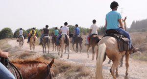 Therapeutic Horseback Riding – Addiction Recovery