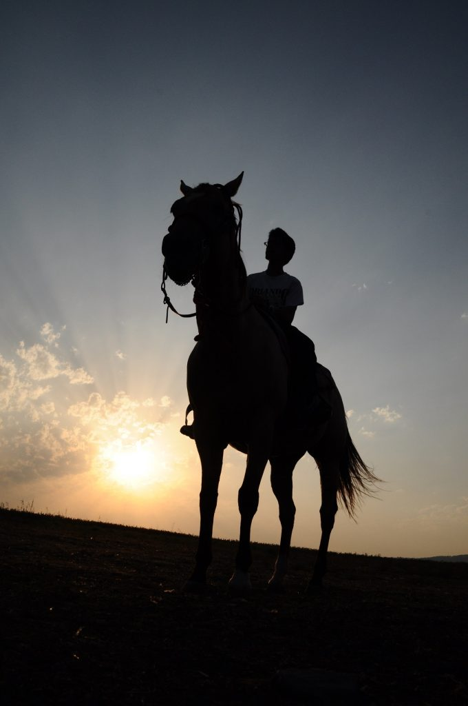 Horseback riding in addiction recovery