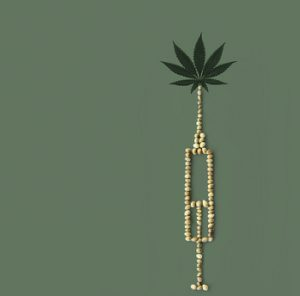 Marijuana is not the solution to PTSD.